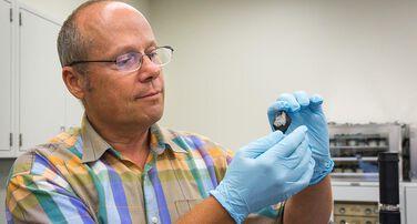 Center for Meteorite Studies Emerging Initiatives Fund